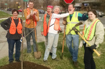 Trees Do Grow in Irvington